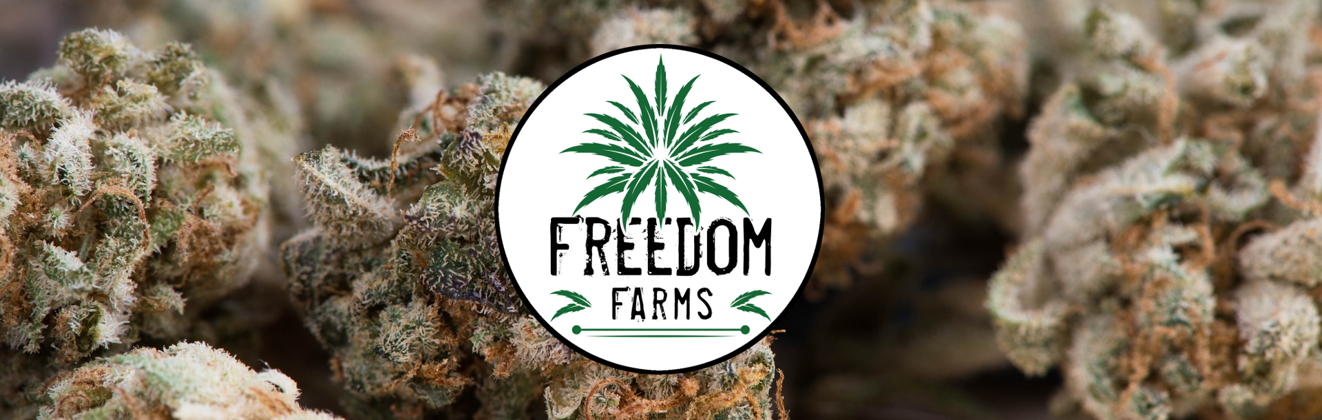 freedom farms